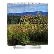 Moultons Field Shower Curtain