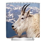 Mountain Goat Portrait On Mount Evans Shower Curtain