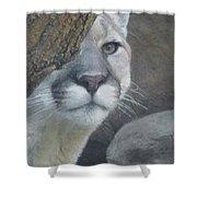 Mountain Lion Painterly Shower Curtain