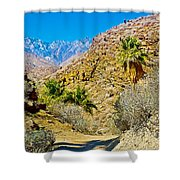 Mountain Peaks From Lower Palm Canyon Trail In Indian Canyons Near Palm Springs-california Shower Curtain
