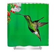 Mountain Velvetbreast Shower Curtain