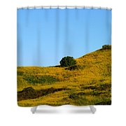 Mustard Grass Shower Curtain