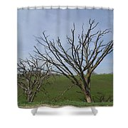 Naked To The World Shower Curtain