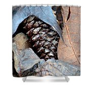 Natural Abstract 47 Shower Curtain