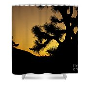 New Photographic Art Print For Sale Joshua Tree At Sunset Shower Curtain