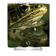 Northern Leopard Frog Shower Curtain