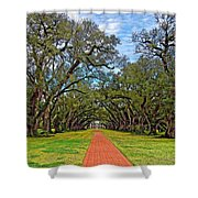 Oak Alley 3 Shower Curtain