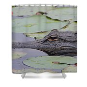 Okefenokee Gator Shower Curtain