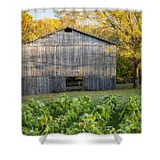 Old Tobacco Barn Shower Curtain by Brian Jannsen