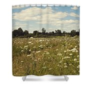 On The Summer Meadow. Russia Shower Curtain