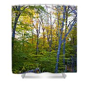 On Top Of Bald Mountain Shower Curtain