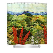 One More Step Shower Curtain