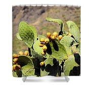 Opuntia Ficus-indica Shower Curtain