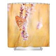 Orange Butterfly Shower Curtain