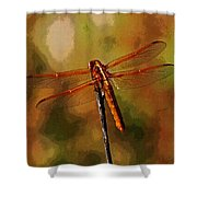 Orange Dragonfly Shower Curtain