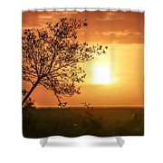 Orange Morning Shower Curtain