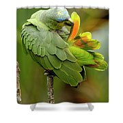 Orange-winged Parrot Amazona Amazonica Shower Curtain
