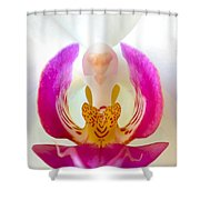 Orchid Detail 1 Shower Curtain