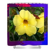 Orchid Pink Flower Bud Photographed At Costa Rica Sensual Smile Graphic Dital Painted Background Ide Shower Curtain