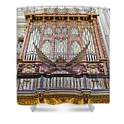 Organ In Cordoba Cathedral Shower Curtain