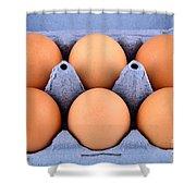 Organic Eggs Shower Curtain