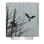 Osprey Love Shower Curtain