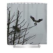 Osprey Love Shower Curtain