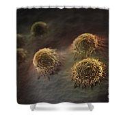 Osteoblast Cells Shower Curtain