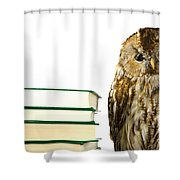 Owl At A Book Pile Shower Curtain
