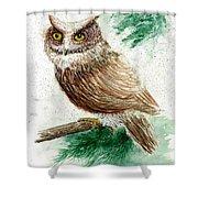 Owl Study Shower Curtain