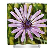 Oyster Plant Shower Curtain