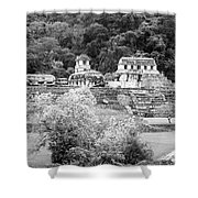 Palenque City Shower Curtain