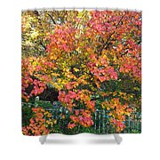 Pallette Of Fall Colors Shower Curtain