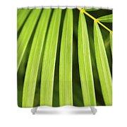Palm Tree Leaf Shower Curtain