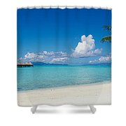 Palm Tree On The Beach, Moana Beach Shower Curtain