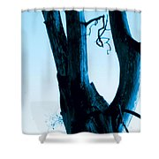 Parish Shower Curtain
