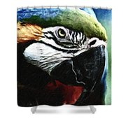 Parrot 13 Shower Curtain