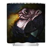 Parrot 9 Shower Curtain