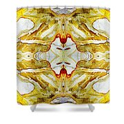 Patterns In Stone - 150 Shower Curtain
