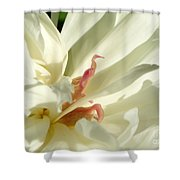 Peaceful Sentinel Of The White Peony Shower Curtain