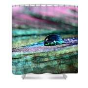 Peacock Gem Shower Curtain