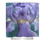 Pearl Of The Iris Shower Curtain