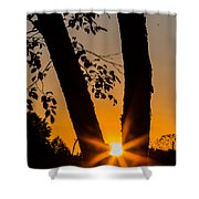 Peeking Sun Shower Curtain