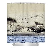 Pelican At Coorong Shower Curtain