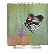 Piano Key Butterfly1 Shower Curtain
