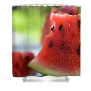 Pieces Of Watermelon Shower Curtain
