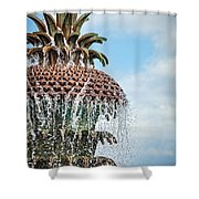 Pineapple Fountain Shower Curtain
