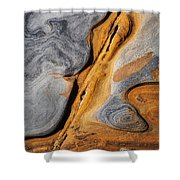 Point Lobos Abstract 4 Shower Curtain