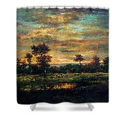 Pond At The Edge Of A Wood Shower Curtain