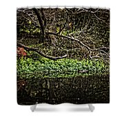 Pond Reflection Shower Curtain